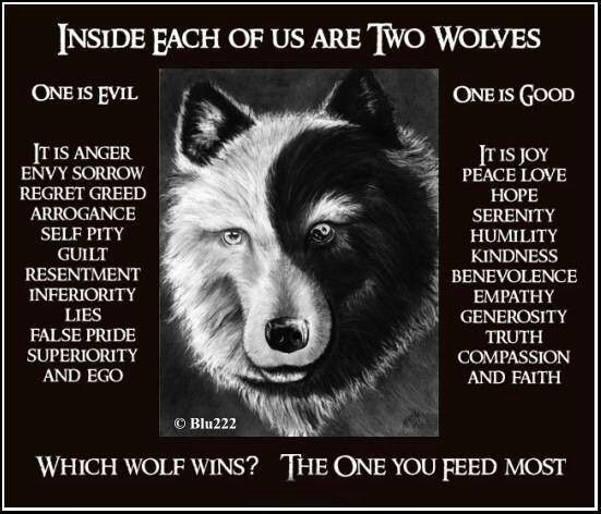 Two Wolves Tale